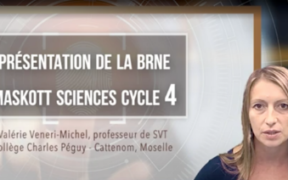 brneautoformationsciencescycle4